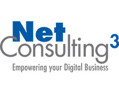 NET CONSULTING CUBE